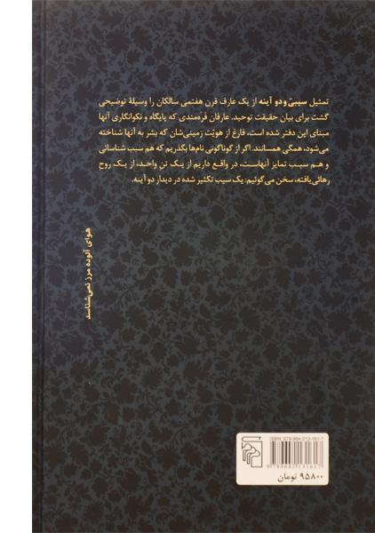 کتاب سیبی و دو آینه – قاسم هاشمی نژاد/ نشر مرکز