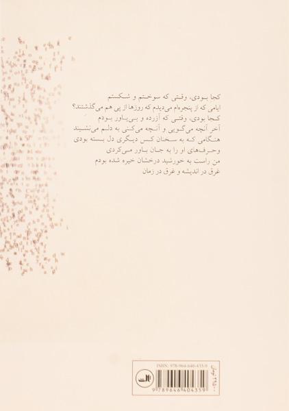 کتاب ترانه های پینک فلوید – سید بارت/ م. آزاد/ نشر ثالث