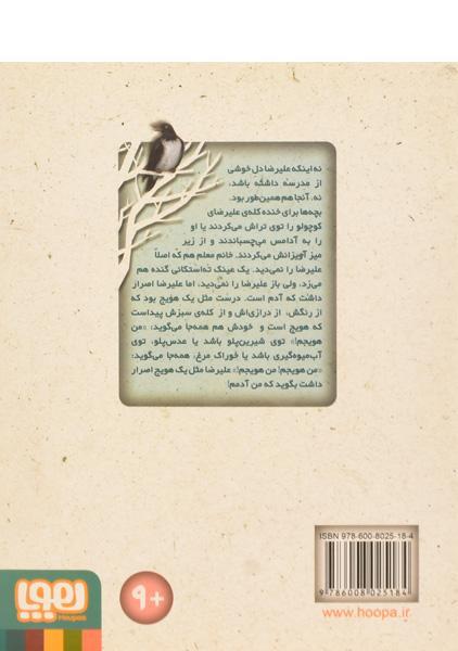 کتاب آب نبات چوبی آویزان و هویج های سرگردان – نشر هوپا