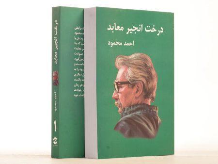 کتاب-درخت-انجیر-معابد،احمد-محمود-۲