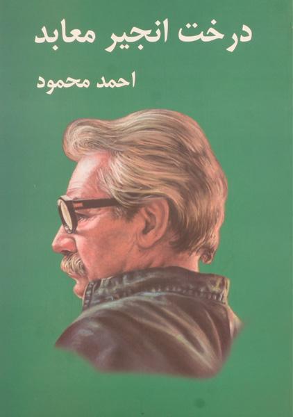 کتاب-درخت-انجیر-معابد،احمد-محمود-۳