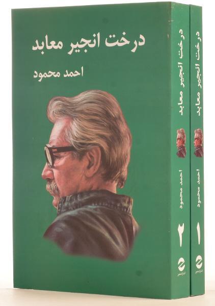 کتاب-درخت-انجیر-معابد،احمد-محمود-۵