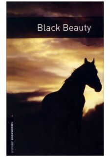 Black-Beauty-1-600x600